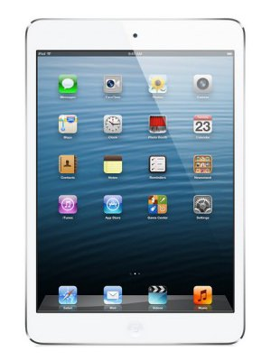 Apple iPad mini Price